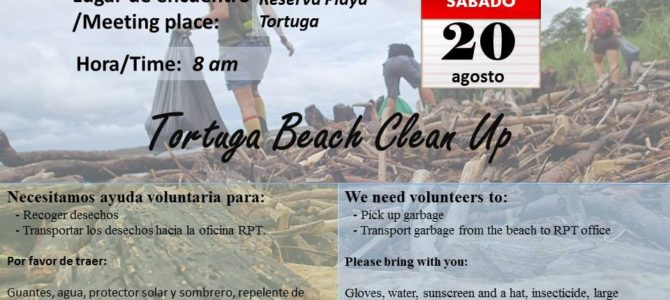 Beach Clean-Up Scheduled!
