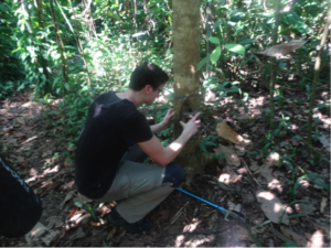 Barry setting up camera traps
